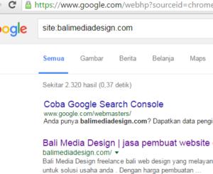cara cek artikel yang sudah di index google